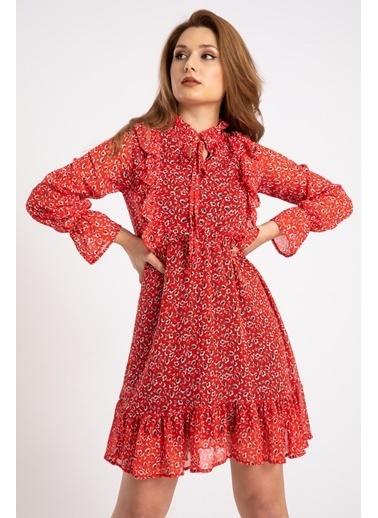 Madame Sare  Kadın Kırmızı Fırfırlı Çiçek Desenli Şifon Elbise Kırmızı